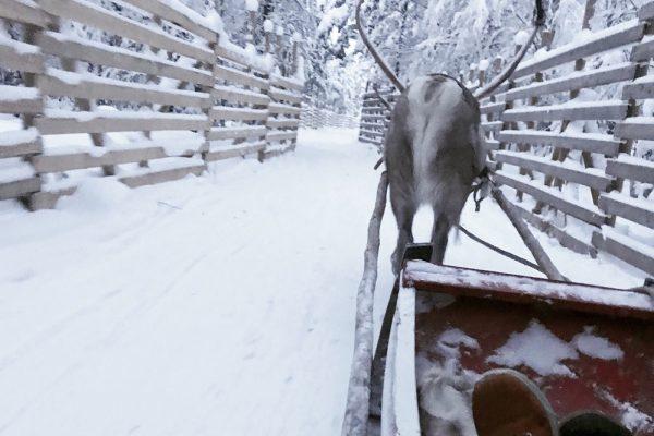 turizmas Laplandijoje